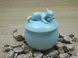 キャンディーBOX・アイスブルー・ニャンコ-Eの画像