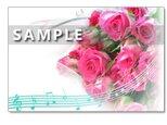 1108) ピンクのバラのブーケたち   ポストカード5枚組の画像