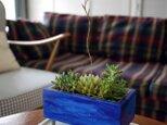 アートプランター+ 多肉植物の画像