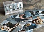 2016自遊石カレンダーの画像