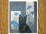 猫の和風ポストカード2 選べる3枚セットの画像