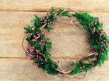 Christmas wreathe 1の画像