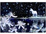 雪狐 2Lサイズ の画像