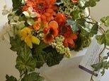 Bloomy Spring Mの画像