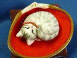アンモニャイト サバ白猫ちゃん  中上様オーダー品の画像