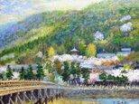 春の嵐山の画像