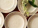 伊豆土リムストライプの六寸皿(白釉)の画像