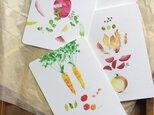 Fresh Vegetables 野菜のカードセットの画像