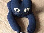 ついて行くねん 黒猫の画像