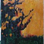 夕方の木の画像