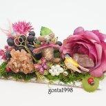お花の妖精「おやゆびくまちゃん」☆森に行くの画像