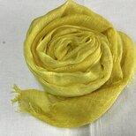 草木染め シルクストール コブナグサ 黄色の画像