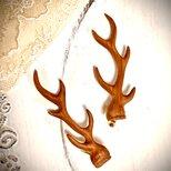 鹿の角のイヤリング(桂の木)の画像