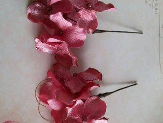 アナベルSピンク 2コセットの画像