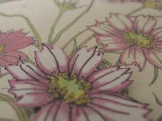 フリーメッセージ◇2L白色カード 【秋桜】 1枚の画像