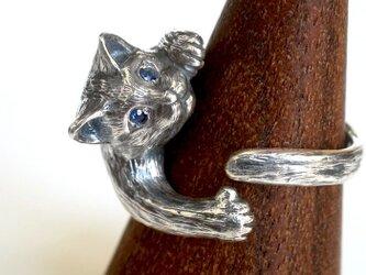 猫リング ジュリエッタ(クリクリ瞳バージョン)の画像