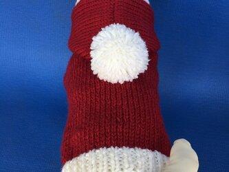 小型犬用フード付セーターの画像