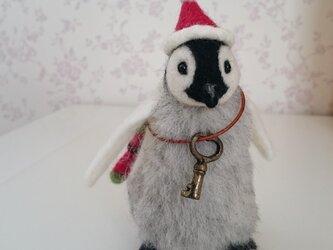 クリスマス☆ペンギンの赤ちゃん☆の画像