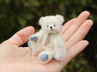 ミニチュアテディベア ホワイト×ブルーの画像
