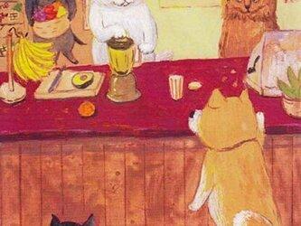 カマノレイコ オリジナル猫ポストカード「ジュース・スタンド」2枚セットの画像