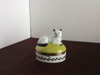 アンテークの白磁猫の小判蓋物の画像