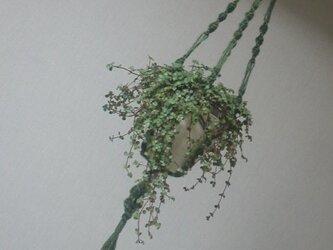 マクラメ・プラント・ホルダー/macramé plants holderの画像