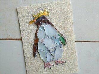 Sea glass wall decoration  「イワトビペンギン」の画像