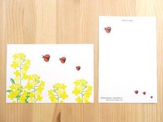 セブンオレンジ ポストカード《菜の花とてんとうむし》(2枚入り)の画像