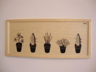 Fish plantの画像