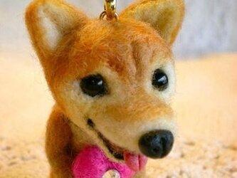 羊毛フェルト 柴犬ストラップ(ハート)の画像