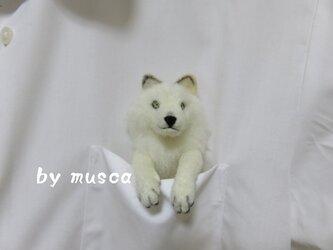 ポケットブローチ<オオカミ>の画像