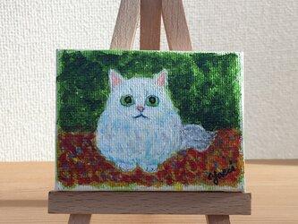 【napnap13様オーダー品】まんまる白猫 ミニイーゼル付き原画の画像