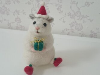 クリスマス☆パールハムスターの画像