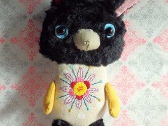 みい(黒ウサギ)の画像