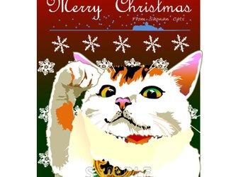 ポストカード 湘南Catsのクリスマス ⑧ 招き猫 三毛猫!の画像