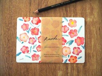 野ばらのポストカードの画像