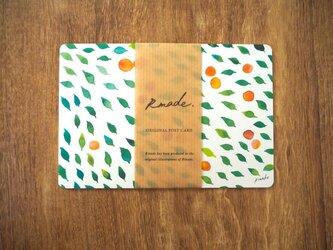 みどりのそよ風のポストカードの画像