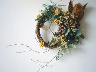 マグノリアの葉の入ったクリスマスリースの画像
