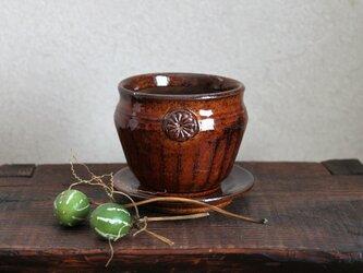 茶飴 植木鉢の画像