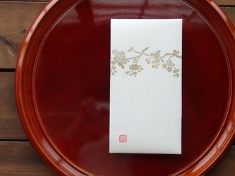和紙祝儀袋 たとう包み 枝桜 2枚入りの画像