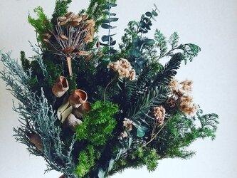 森のスワッグの画像