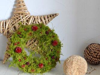 【定形外可】赤い実とナチュラルグリーンのリース  プリザーブドフラワーアレンジ  ギフト 北欧 クリスマスの画像