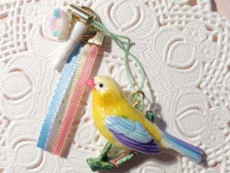 鳥のカラフル・パステルイヤホンジャックの画像