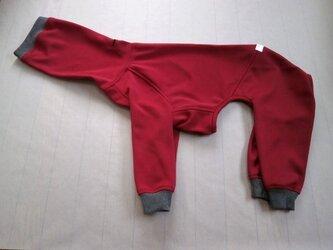 犬服 [受注生産]ウィペット用フルスーツ ワインレッドの画像