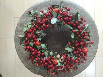 クリスマスリース 赤い野ばらの実の画像