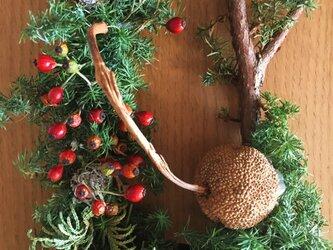 <sale>30%off クリスマス直前 細長いツリー型リースの画像
