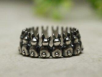 ウサギの集会リングの画像