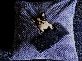 BUHIクッション(青系)赤ファスナーL(カバー&クッション付き)の画像