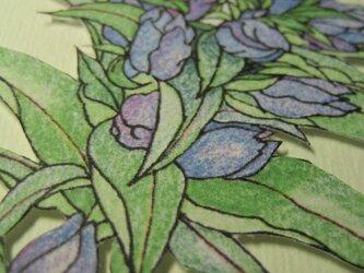 フリーメッセージ◇2L白色カード 【秋青色】 竜胆(リンドウ)の画像
