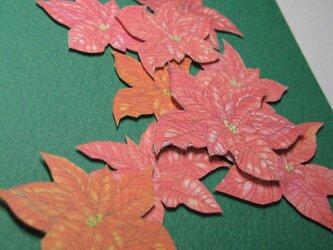 フリーメッセージ◇A5緑色カード 【冬紅色】ポインセチア 1枚の画像